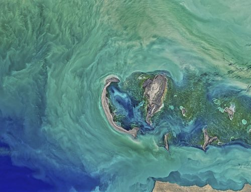 Study on the transferability of SOCAR's monitoring system of GHG emissions to other companies within the oil and gas sector in the region of the Black and Caspian Sea